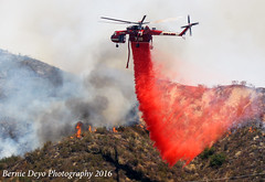 Sand Fire Day 4 (Bernie Deyo Photography) Tags: sand fire 2016 santa clarita lacofd brushfire wildlandfire wildfire airtanker air ops placerita canyon california vlat c130 coulson bae146 rj90 helitanker erickson s64e phoscheck retardent attack fixed wing water bombers brush neptune 10 tanker carrier next generation tankers