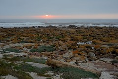 au naturale (mountainSeb) Tags: sunset mist misty cape town south africa sebastianselzer seascape landscape