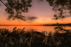 Glowing trees at sunset (mathiasboman) Tags: grass canon6d sverige sunrise landscapephoto nordic outdoor lake orange clouds trees summer stergtland landscapeimages hdr sea solnedgng waterscape green sunset seascape sweden solnedgng stergtland