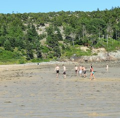 Sandy Beach (dale52.5) Tags: sandybeach acadia maine vacation beach outdoor
