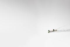 Mallard Dux / Redux (Michael Bateman) Tags: amniota anasplatyrhynchos anatidae animalia anseriformes aves avilalae bird chordata ducksgeeseandswans eumaniraptora mallard mallardduck neognathae neornithes sauropsida teleostomi tetrapoda wildlife animals birds kinnelon newjersey unitedstates us michael bateman photography michaelbateman