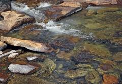 Rocks in the Tuolumne River (Ron Wolf) Tags: nationalpark sierra yosemitenationalpark landscape nature river rock water california