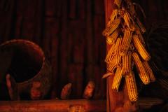 Longhousea at Iroquoian Village, Crawford Lake Conservation Area, Ontario (teachandlearn) Tags: indoor architecture longhouse canada iroquois village ontario corn interior dark cob