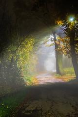 Vialetto (mimmotamburro) Tags: panorama paesaggio landscape portrait nebbia fog luci notte light night canon 70d sigma1750