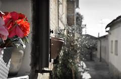 Take care (Enrico.mate - Foto/Grafico) Tags: treia italia italy iamnikon immagine nikon nikonclubit city città architecture architettura building costruzione palazzo old antico medieval historic storico marche campagna country mountain montagna sibillini sky blue blu 18105vr marble
