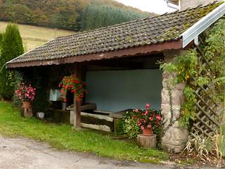 Lavoir dans les Vosges