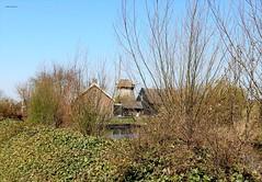 Molen Hollandia, Ankeveen (bcbvisser13) Tags: poldermolen molen 1640 ankeveenschepolder woningrestaurant ankeveen gemwijdemeren provnoordholland nederland eu