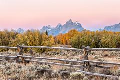Autumn Tetons 2016 #99 (greggohanian) Tags: grandtetons tetons sunrise foliage fence buckrailfence sagebrush