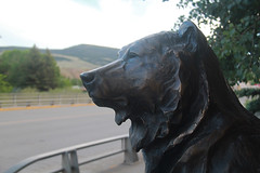 Don't fence me in - HFF (RPahre) Tags: art sculpture bear grizzlybear dubois wyoming fence hff