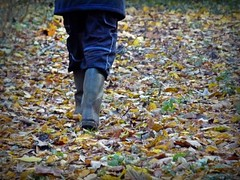 2016-11-24 wood (31)f (april-mo) Tags: rubberboots wellies deadleaves man wood bottes caoutchouc