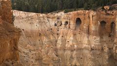 hoodoo windows (Mr. Greenjeans) Tags: brycecanyon hoodoos windows nationalpark rock cliffs erosion nature rockformations utah