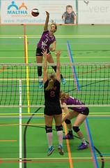 1B260843 (roel.ubels) Tags: vv utrecht eurosped galgewaard volleybal volleyball 18 finale nationale beker