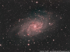 M33 - Triangulum Galaxy (Simon Todd Astrophotography) Tags: m33 triangulum galaxy deepsky longexposure ccd atik 383l skywatcher eq8pro celestron c80ed qhy5lii sequencegeneratorpro quattro starlightxpress astrometrydotnet:id=nova1840823 astrometrydotnet:status=solved