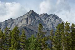 Cascade Mountain (Mark Heine Photos) Tags: ca canada alberta banff pinetrees banffnationalpark canadianrockies cascademountain improvementdistrictno9 markheine
