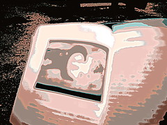 IMG_2643 (Baha'i Views / Flitzy Phoebie) Tags: book election iran literary 2009 negar iranelection mottahedeh