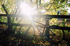 Trek (everydayfuji) Tags: city travel autumn urban fall bike bicycle backlight lights cycling shadows exercise journey fujifilm fixie fixedgear fitness fit backlighting x100 trekbikes nogears fujifilmnorthamerica