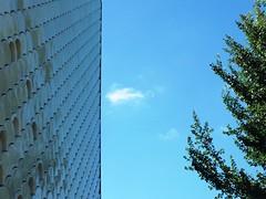 Blue Sky (isabelbernardo) Tags: blue azul lisboa lisbon bluesky parquedasnacoes lisbonisbeautiful