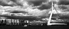 A ray of sunlight at the Bridge (jo.misere) Tags: bridge bw white black clouds contrast boot rotterdam erasmus sony brug alpha zw spido wloken 1750mm28f
