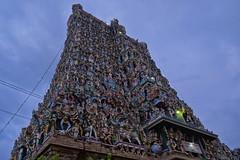Gopuram Sundareswarar Meenakshi Temple (Arul Damodaran) Tags: temple south madurai meenakshi gopuram sundareswarar