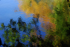Travelling Light (offroadsound) Tags: autumn reflecting colours gloomy herbst waterreflection travellinglight notreatment justnatural erdfällediekholzen notreatmentjustnatural