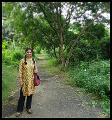 Not a nice path  @  Maharashtra Nature Park (Indianature14) Tags: india nature forest october bombay maharashtra mumbai 2015 cityforest mmrda indianature mahimnaturepark maharashtranaturepark mumbaiforest