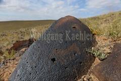 30095288 (wolfgangkaehler) Tags: old horse rock asian ancient asia desert mongolia centralasia petroglyph gobi blackmountains petroglyphs mongolian gobidesert southernmongolia