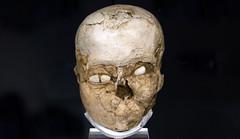 Plastered Skull, Jericho