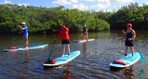 11_29_15 Private Paddle Tour Lido Key FL 11