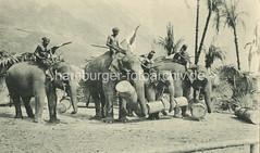 X0994346 Indische Vlkerschau von Gustav Hagenbeck - historische Darstellung von indischen Arbeitselephanten unter Palmen, die Tiere tragen Baumstmme, die Elefantenfhrer sitzen auf den Tieren. (christoph_bellin) Tags: elephant tiere alt hamburg gustav fotos hamburger elefant bilder ausstellung hagenbeck hansestadt entwicklung geschichte ansicht palmen sitzen baumstmme stellingen exotisch indische hagenbeckstierpark damals historische fremde frher arbeitstier vlker darstellung stadtteil indischer vlkerschau elefantenfhrer arbeitselefanten stellinger vlkerschauen