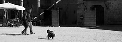 by crossing the square (pepe amestoy) Tags: blackandwhite streetphotography people pedraza segovia spain fujifilm xe1 carl zeiss t planar 250 zm leica mount