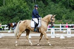 IMG_0690 (aaveennet) Tags: 2016 3taso 3tasokoulu heinkuu heinkuu2016 hevonen kes kilpailut koulu koulukisat kouluratsastus kuopio kuor ratsastus ratsastuskuva sorsasalo