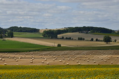 Ombres des nuages (Flikkersteph -4,000,000 views ,thank you!) Tags: countryside rural landscape nature summer beautiful fields clearsky champagneetfontaine prigord france