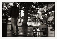 seattle week ends (chickentender (Eyewanders Foto)) Tags: 135format 35mmfilm fsurfcamera ilford ilfordfp4plus kiev4m pakonf135scan ukranianrangefinder aftertherain analogueway ballard eyewandersfoto film ishootfilm majesticbay marketstreet moviegoers nightlife outandabout puddles refelection seattle street strolling summer2016 walkers weekend wet
