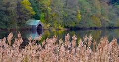 Loch Ard (val.moir) Tags: lochard loch aberfoyle scotland