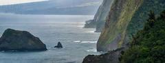 Kohala Sea Cliffs (mikeSF_) Tags: hawaii hawaiian islands kohala pololu waipio pacificocean ocean cliff cliffs sunrise green valley water shore landscape seascape seastack pentax k3ii k3 wwwmikeoriacom mikeoriaphotography outdoor pano panorama panoramic dfa 150450 450mm