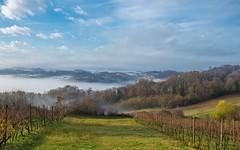 Zagorje (01) - misty morning (Vlado Fereni) Tags: zagorje veternica hrvatska hrvatskozagorje mistymorning foggymorning foggy fog croatia nikond600 nikkor357028 landscapes