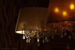 Nectar Home Interior (Natali Antonovich) Tags: nectarhomeinterior tradition comfort cosiness herent glasses vigorousitems lampshade lamp crystal light lifestyle style shop