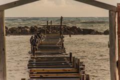 Cormorani pontile Santa Marinella (Fabrizio Aloisi) Tags: cormorani pontile santamarinella mare tempesta autunno