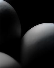 eggzactly.... bw (gks18) Tags: eggs canon macro closeup blackandwhite bw nature simple food shape round
