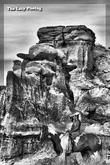 Decades meet between Black Hills and badlands (lazy_photog) Tags: lazy photog elliott photography worland wyoming black white compilation photoshop gooseberry highway devils kitchen native americans indians paint horses