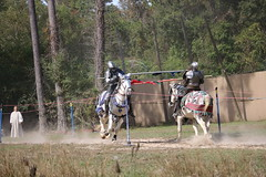 IMG_4802 (joyannmadd) Tags: horse rider joust spar duel warhorse hammoind louisiana armour outdoor game war combat midevil larenfest
