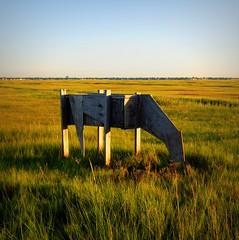 Grazing (mydogripley) Tags: grassland meadow green grass grazing cow horse sculpture figure plywood wood art stick