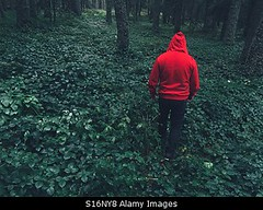 Photo accepted by Stockimo (vanya.bovajo) Tags: stockimo iphonegraphy iphone man woods wood forest hiking walking exploring male teenager alone nobody men adult adults scary scared lost tale dark darkness mist french france