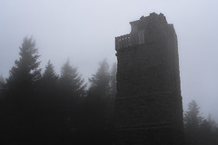 Outpost (zh3nya) Tags: cloudy tower architecture watchtower lookout pnw pacificnorthwest washington washingtonstate wa trees forest gloomy masonry building washingtonstateparks wastateparks mountconstitution moranstatepark orcasisland sanjuanislands sigma35mmf14 d750 dark atmospheric eerie alone solitary