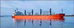 Eastern Asia_2477 LR (bradleybennett) Tags: ship shipping cargo tanker tank river delta boat port channel steam large crew crane bay ocean dock pier blue red water line bulkcarrier eastern asia