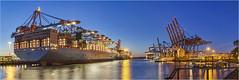 Blue Hour - 27111601 (Klaus Kehrls) Tags: blauestunde hafen hamburgerhafen waltershoferhafen hamburg elbe industrie panorama nachtaufnahme