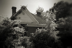 Shy House (Mike McCall) Tags: copyright2016mikemccall talbotcounty talbot county georgia usa talbotton shy house