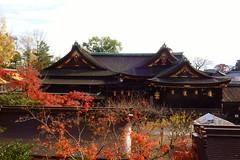 DSC02776 (MrSUIZOU) Tags: 京都 紅葉 北野天満宮 平野神社 十月桜