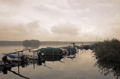 B - Tegeler See (elisachris) Tags: berlin reinickendorf tegelersee water winter natur landschaft landscape himmel sky wolken ruhe silence ricohgr