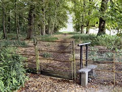 Invitation to a walk (Mrs Fogey) Tags: trees gate footpath stile cambridgeshire madingley
